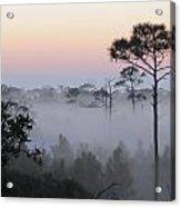 Fog At Dawn Acrylic Print