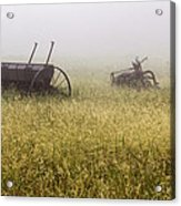 Fog Covered Field Acrylic Print
