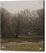 Fog Day Acrylic Print by BandC  Photography
