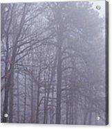 Fog In The Smoky Mountains Acrylic Print