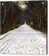 Fog On The Winter Macomb Orchard Trail Acrylic Print