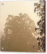 Fog Over Countryside Acrylic Print