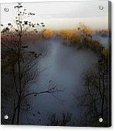 Fog Photo Acrylic Print