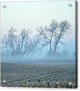 Fog Warriors Acrylic Print