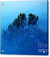 Fogged Out Acrylic Print