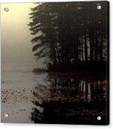 Foggy Bog Sunrise Acrylic Print