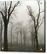 Foggy Cemetery Road Acrylic Print