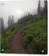 Foggy Crest Trail Acrylic Print by Mike  Dawson