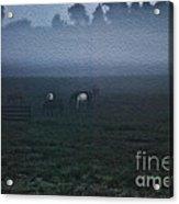 Foggy Dew Acrylic Print
