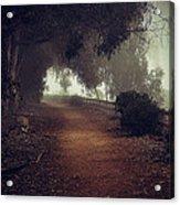 Foggy Dreams Acrylic Print