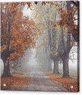 Foggy Driveway Acrylic Print by Wendell Thompson