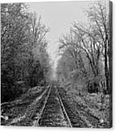Foggy Ending In Black And White Acrylic Print