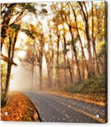 Foggy Fall Wonderland - Blue Ridge Parkway I Acrylic Print by Dan Carmichael
