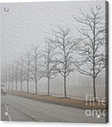 Foggy January Acrylic Print