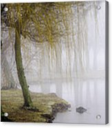 Foggy Lake Morning Acrylic Print