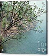Foggy Lake Superior Acrylic Print