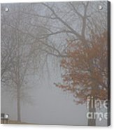Foggy Lake View Acrylic Print