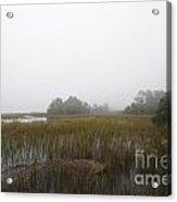 Foggy Marsh Acrylic Print
