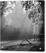 Foggy Morn At Dog Park Acrylic Print
