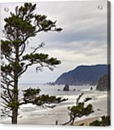 Foggy Morning At Tolovana Beach Oregon Acrylic Print