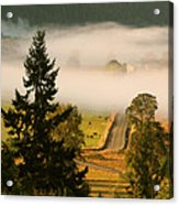 Foggy Morning Drive Acrylic Print