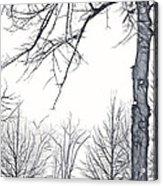 Foggy Morning Landscape - Fractalius 6 Acrylic Print
