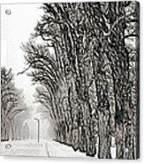 Foggy Morning Landscape - Fractalius 7 Acrylic Print by Steve Ohlsen