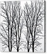 Foggy Morning Landscape - Fractalius  Acrylic Print by Steve Ohlsen