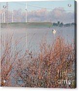 Foggy Morning On The Sacramento River Acrylic Print