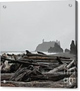 Foggy Morning On The Washington Coast  2 Acrylic Print