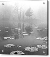 Foggy Morning Acrylic Print by Wendell Thompson