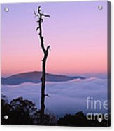 Foggy Mountain Morning Acrylic Print