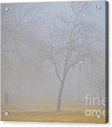 Foggy Park Morning Acrylic Print