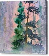Foggy Patch Acrylic Print