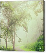 Foggy Path - Blue Ridge Parkway Acrylic Print