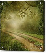 Foggy Road Photo Acrylic Print by Boon Mee