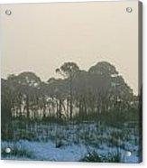 Foggy Sunny Florida Sunrise Acrylic Print