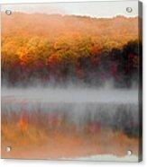 Foilage In The Fog Acrylic Print