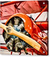 Fokker Dr.1 Acrylic Print