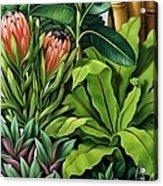 Foliage IIi Acrylic Print