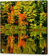 Foliage In New Hampshire Acrylic Print