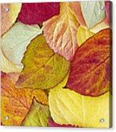 Foliage Quilt Acrylic Print