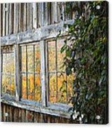 Foliage Reflections Acrylic Print