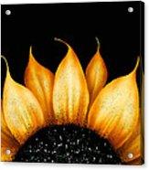 Folk Art Sunflower Acrylic Print