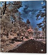 Follow The Infrared Road Acrylic Print by Thomas  MacPherson Jr