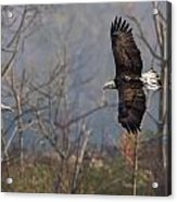 Follow The Leader  Acrylic Print by Glenn Lawrence