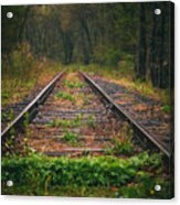 Following The Tracks Acrylic Print