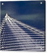 Following The Wake Acrylic Print