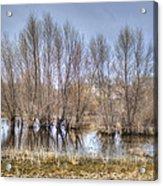 Folsom Dried Pond  Acrylic Print