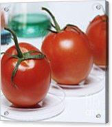 Food Research Acrylic Print